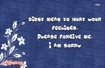 Didnt Mean To Hurt Your Feelings. Please Forgive Me. I Am Sorry