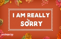 I Am Really Sorry Quotes