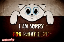 I Am Sorry For What I Did Message