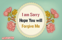 I Am Sorry I Cant Be Perfect Image
