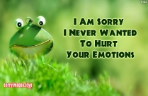 I Am Sorry I Never Wanted To Hurt Your Emotions