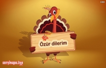 I Am Sorry In Turkish