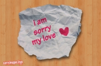 I Am Sorry My Love Image