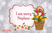 I Am Sorry In Bengali