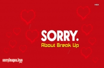 Sorry About Break Up
