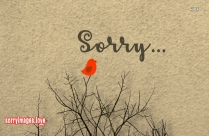 Sorry Love Image Hd