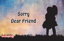 Sorry Dear Friend Status