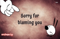 Sorry My Apology