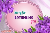 Sorry Text Message
