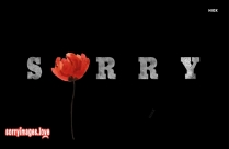 Sorry Message For Girl