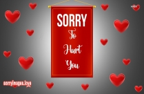 Sorry For Hurt You Image