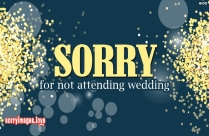 Sorry For Not Attending Wedding
