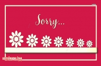 Sorry Greetings Picture