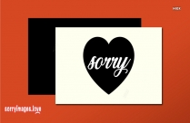 Sorry For Causing You Pain Message