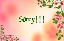 Sorry HD Wallpaper, Images, Pictures, Photos for Whatsapp