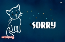 Sorry Kitty Image