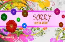 Sorry Never Mind Message