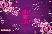 Sorry Not Sorry Gif