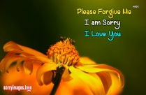 Please Please Please Forgive Me Quote