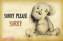 Sorry Please Smile Image