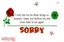 Sorry But I Love U Quotes
