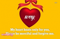 Sorry Love Message Image