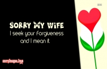 Sorry Quotes Image For Wife