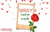 Sorry Saying Message