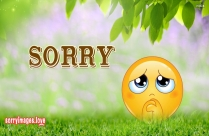 Sorry With Smiley Images, Pictures
