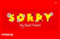 I Am Sorry My Friend