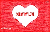 Sorry Valentines Message