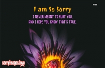 Sorry Pictures Sms