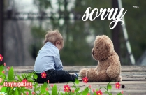 Sorry With Teddy Bear