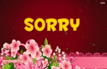 Sorry With Flowers