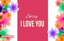 Sorry My Dear Wife I Love You