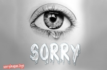 Sorry With Tears Message