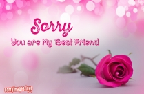 Sorry You Are My BestFriend