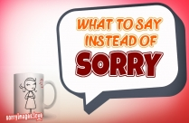 What To Say Instead Of Sorry Image
